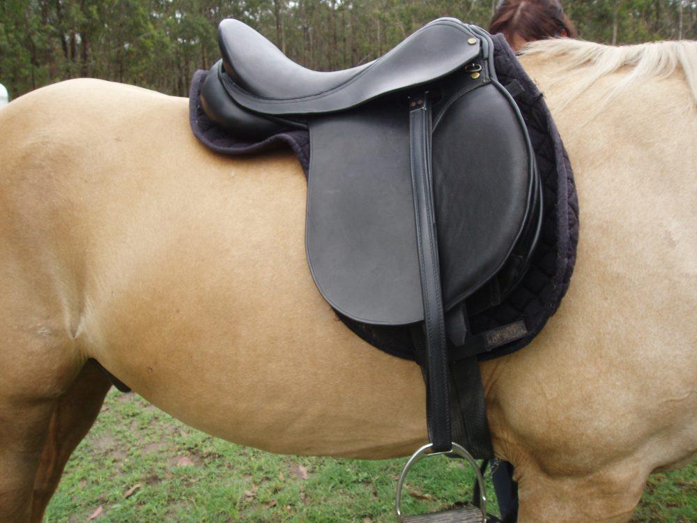 All Purpose Saddle - quality English Leather