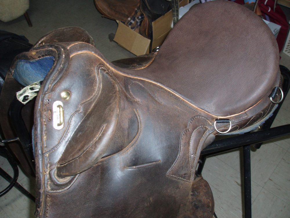 Stock Saddle After – new seat